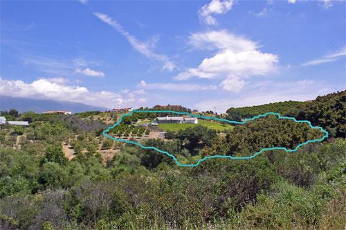 Property-Boundaries